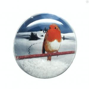 Shakers 'n' Movers Christmas Robin SnowDome Greetings