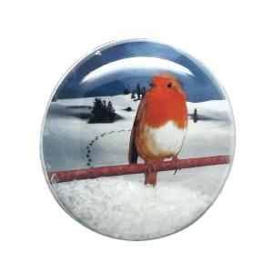 Shakers 'n' Movers Christmas Robin SnowDome Augmented Reality Greetings