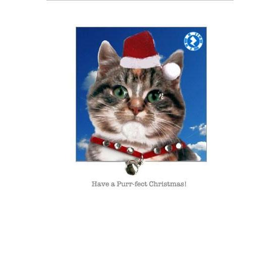 Amazing Christmas Card Magic!