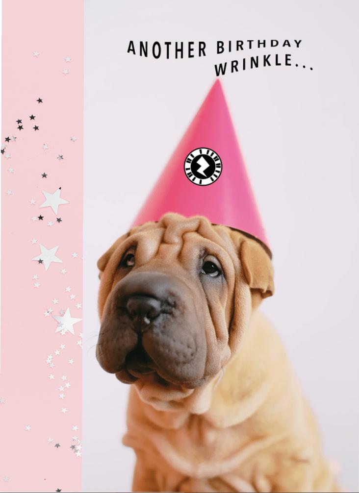 Birthday Wrinkles Pup Card